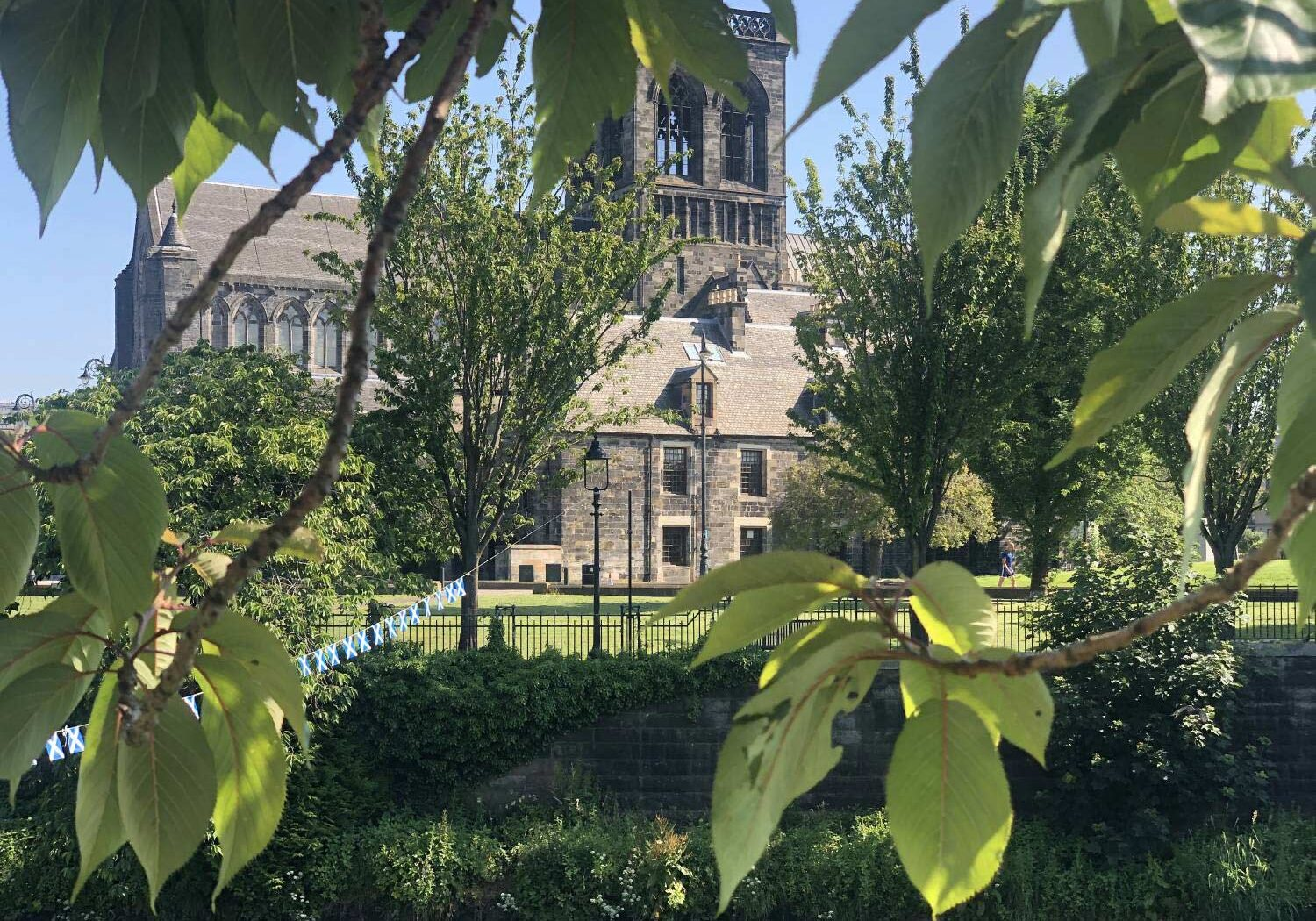 the-abbey-through-the-trees